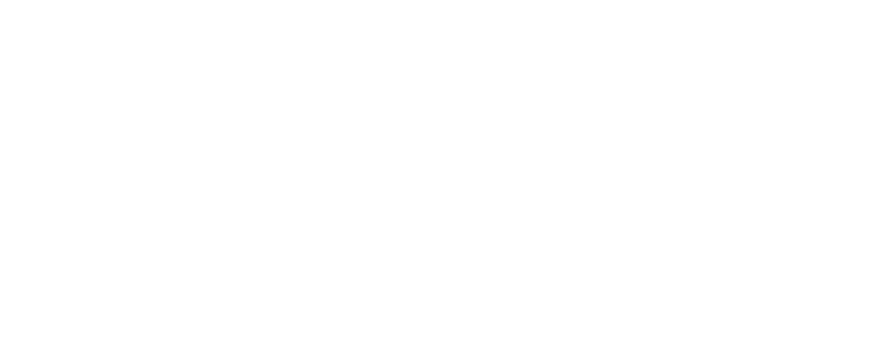 Andruss-Peskin Corporation logo
